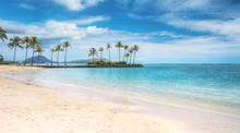 A Beautiful Beach Scene In The...