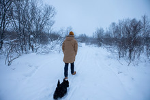 The Man Walks With His Dog In A Winter Forest
