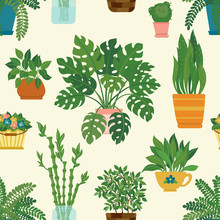 Seamless Pattern Of Decorative Houseplants Isolated On Background. Trendy Plants Growing In Pots Or Planters. Beautiful Natural Home Decorations On White Background.