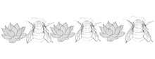 Wild Bees And Lotus Drawing Background Illustration