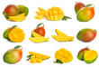 canvas print picture - Collage with tasty mango fruit on white background