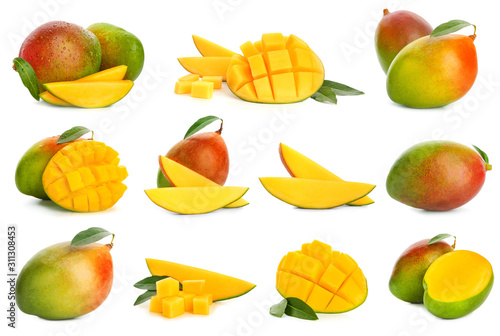 Obraz na plátne Collage with tasty mango fruit on white background