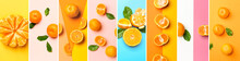 Set Of Sweet Tangerines On Color Background