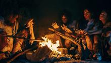 Neanderthal Or Homo Sapiens Fa...