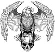 Eagle sitting on the human skull. Black and white Tattoo or shirts design style vector illustration. Front view