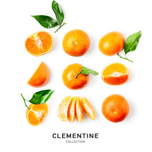 Clementine Citrus Fruit Collec...