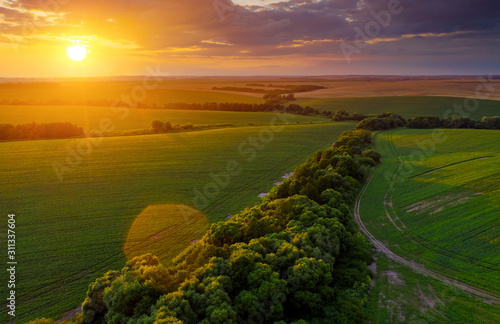 Wall mural - Aerial top view of green rural area under colorful sky at sundown.