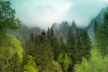 Fantasy Landscape For Magic Fa...