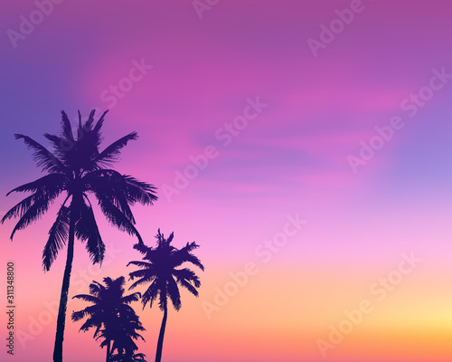Fototapeta Dark palm trees silhouettes on light pink sunrise sky background, vector illustration obraz