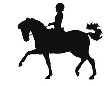 Dressage Rider And Horse Of Ve...