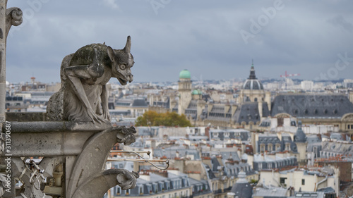 Stone gargoyle on roof of the Notre Dame Cathedral in Paris, France Canvas Print