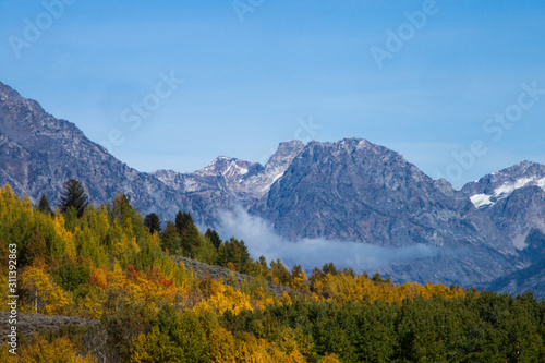 Snow Capped mountain and autumn trees