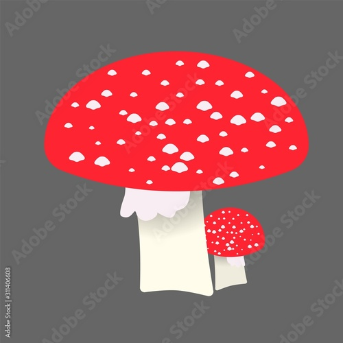 amanita flat illustration. Canvas Print