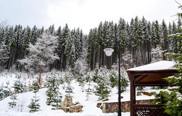 Obraz na płótnie Canvas winter mountains and snow
