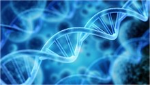 Cells Under Human DNA System I...