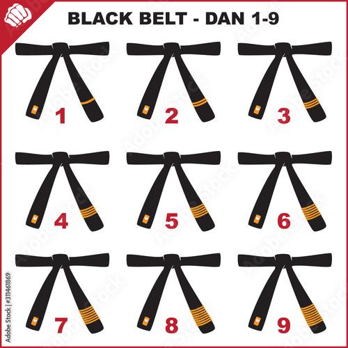 Photo Colored belts for martial arts kimono set, dogi karate,bjj, judo, taekwondo, hapkido, karate