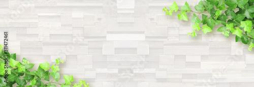 Fotografie, Obraz 白い木目と植物の背景
