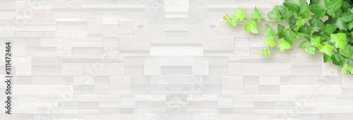 Photo 白い木目と植物の背景