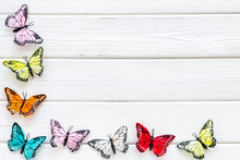 Butterfly - Colorful And Bright Set - On White Wooden Background Top-down Frame Copy Space