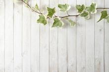 アイビーと白い木目調の床 フレーム