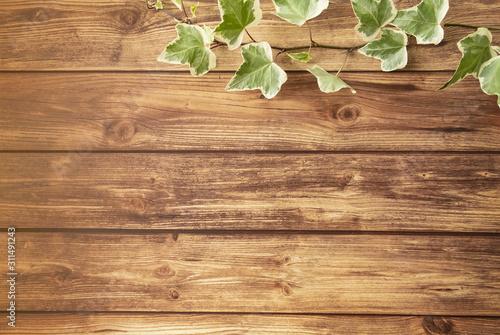 Fotomural アイビーと茶色い木目調の床 フレーム