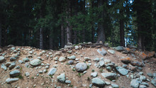 Soil Erosion Caused By A Landslide In A Pine Forest In Doodhpathri Kashmir