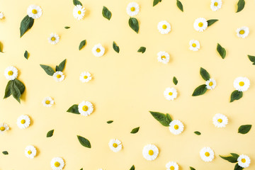 Frame border of white chamomile daisy flowers pattern on yellow background. Flat lay, top view minimal floral composition. Copy space mockup.