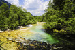 canvas print picture - Fluss, Slowenien, Nationalpark Triglav, Bohinjsko jezera