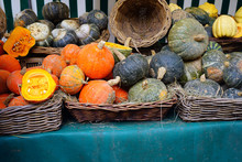 Colorful Orange And Green Pumpkins And Gourds In The Fall