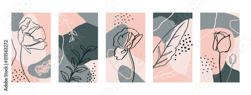 Stampa su Tela Set Backgrounds with poppy flowers and flora Elements