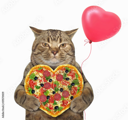 Fototapeta The beige cat is holding a heart shaped pizza and a red balloon. White background. Isolated. obraz