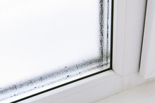 Plastic Window With Damp And W...