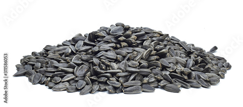 Obraz Roasted sunflower seeds large texture. For texture or background - fototapety do salonu