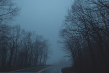 Dark Blue Forest Filled With Fog Looking Down A Long Dark Road