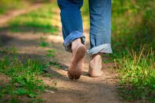 Man Walking On Footpath Forest...