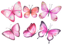 Set Of Watercolor Pink Butter...