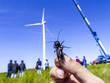 Windpark Parndorf, Finger halten eine Grille, Österreich, Burge