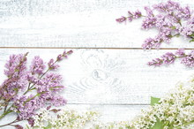 Lilac And White Lilac Branches...