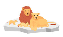 Lion Family On Rock Flat Color...