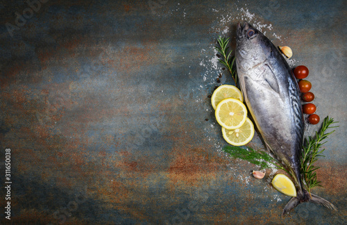 Fresh fish with herbs spices rosemary tomato and lemon - Raw fish seafood on bla Canvas Print