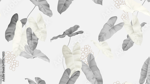 Leinwand Poster  Foliage seamless pattern, grey Philodendron burle marx plant on light grey