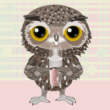 Baby Owl Standing And Holding A Bottle With A Pacifier On A Checkered Background In Pastel Colors