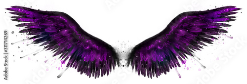 Beautiful magic black purple watercolor wings