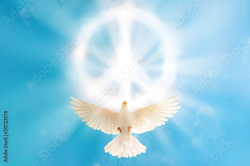 Foto En Lienzo - white dove flying to cloud in pacification sign shape for freedom concept and international day of peace