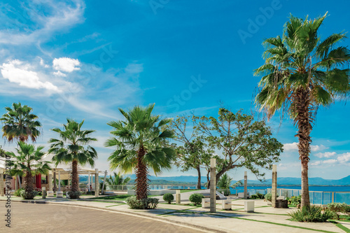 Fenix palm trees, ocean and mountain view, waterfront square, Alicia beach, Sosu Wallpaper Mural