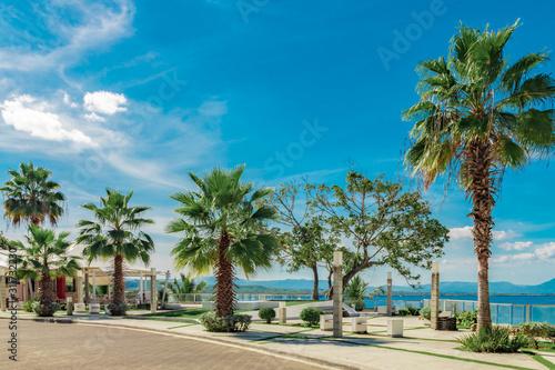 Photo Fenix palm trees, ocean and mountain view, waterfront square, Alicia beach, Sosu