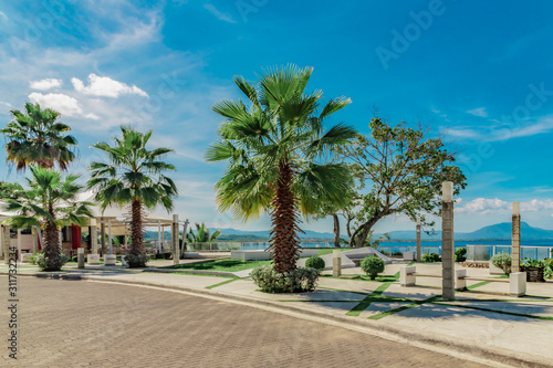 Fenix palm trees, ocean and mountain view, waterfront square, Alicia beach, Sosu Canvas Print