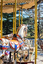 Carousel Colorful Horses In Am...