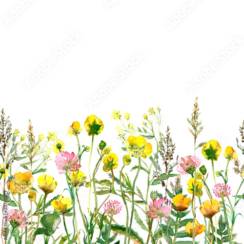 Fototapety, obrazy: Watercolor drawing of wild meadow flowers, buds, inflorescences and leaves. Summer design. Design wallpaper, textiles, packaging, packaging paper, fabric. Seamless pattern.