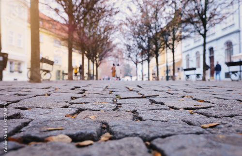 low angle of paving stone vintage road cover with old houses, antique street